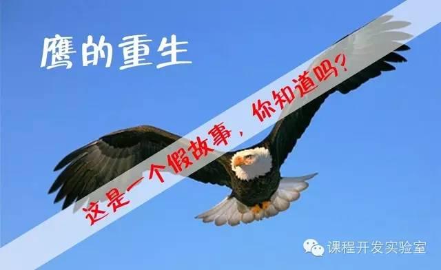 """【原创分享3】给""""大象""""讲故事(下)——不讲假故事 培训师邱伟"""