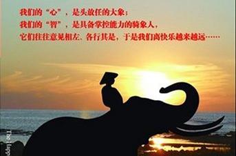 """【原创分享1】如何在课堂上引诱""""大象""""的关注 培训师邱伟"""